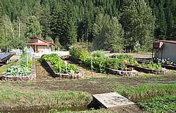Photo of raised beds